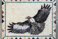 Eagle 52 x 41cm