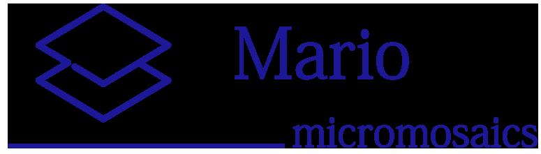 Mario Micromosaics